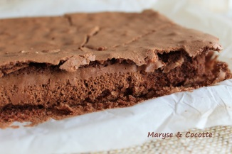 Brownies 027